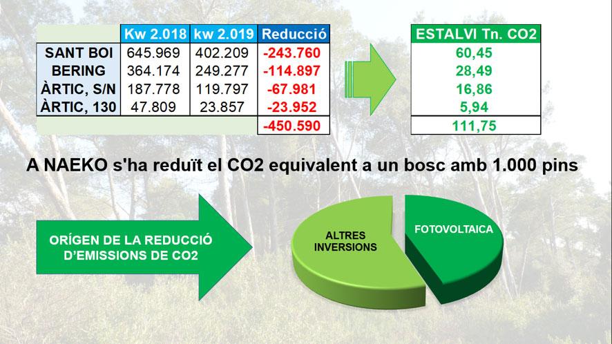 NAEKO redueix el 2019 emissions de CO² equivalents a un bosc amb 1.000 pins